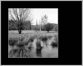 aus der Bildreihe Auenland - SW | © JosWaS - Josef Walter Schumacher | Foto Ausstellung stolberg.variationen.1