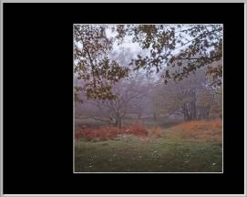 aus der Bildreihe Auenland - Farbdia-Film | © JosWaS - Josef Walter Schumacher | Foto Ausstellung stolberg.variationen.1