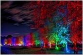 Herbstlichter im Park | © JosWaS - Josef Walter Schumacher